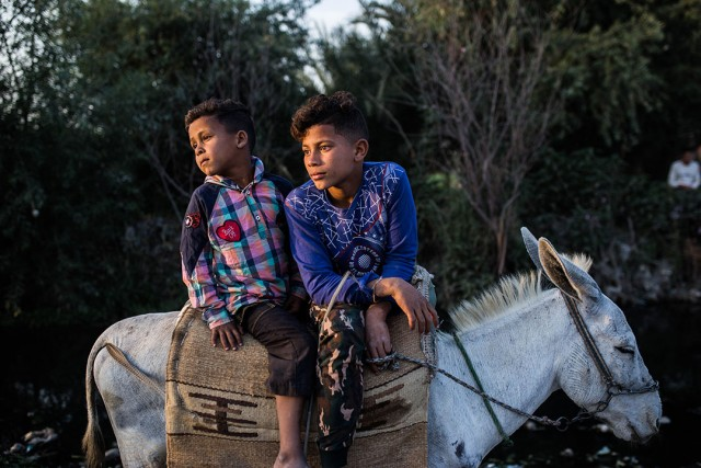 Foto: Hesham Elsherif: Children watch horses competing with each other during El-Mermah, which is a local horse race held annually in Fayoum, 100 km southwest of Cairo, Egypt.